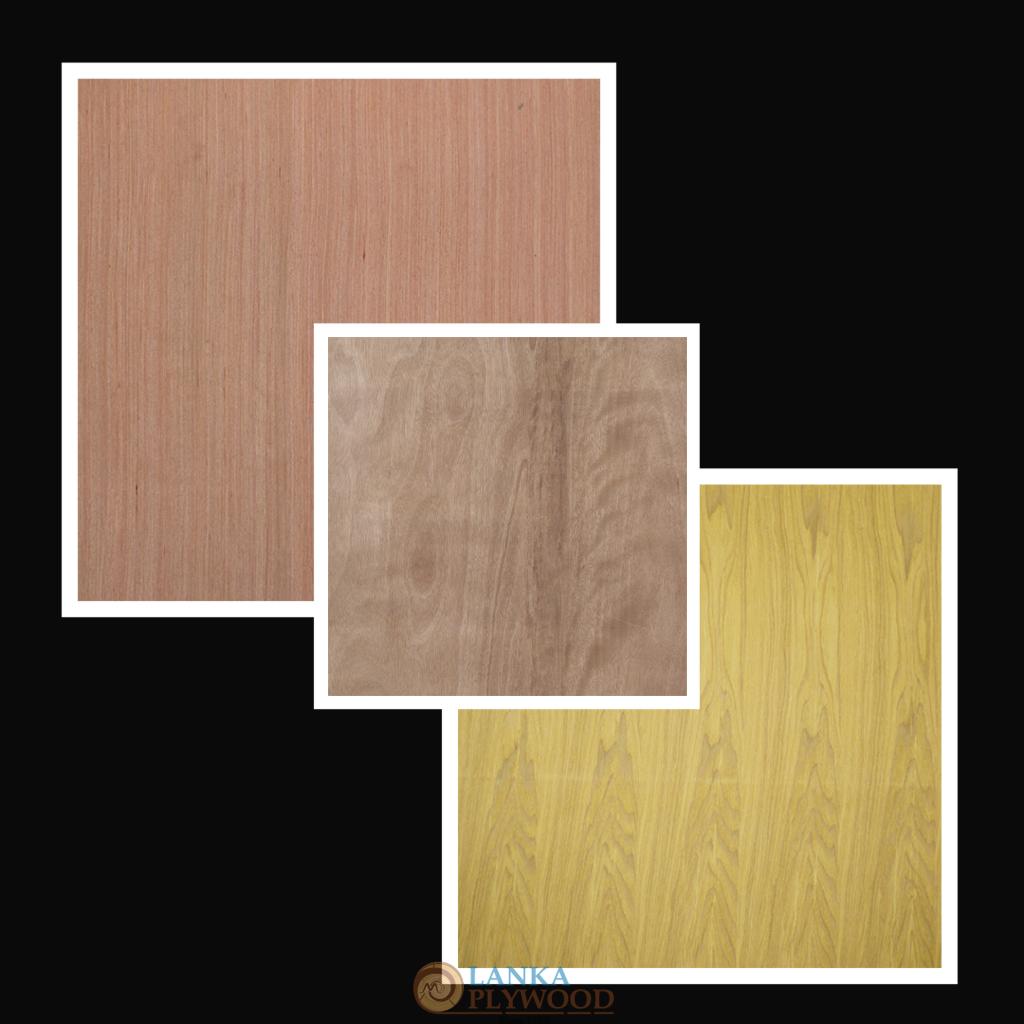 Plywood Doors   Lanka Plywood Manufacturers (Pvt) Ltd
